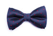 canvas print picture - Bow tie