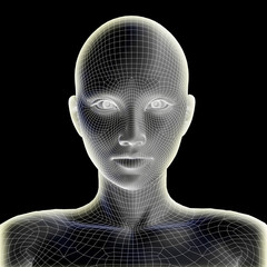 Conceptual wireframe mesh woman face