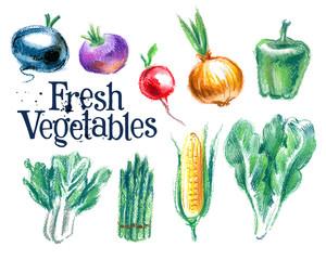vegetables vector logo design template.  fresh food or gardening