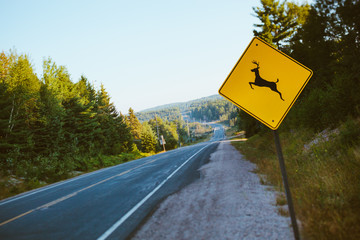 Deer sign in a country road in Canada