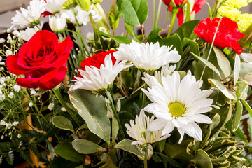 White Daisies with Red Roses