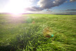 campo de hierba verde y la puesta de sol.Fondo de naturaleza