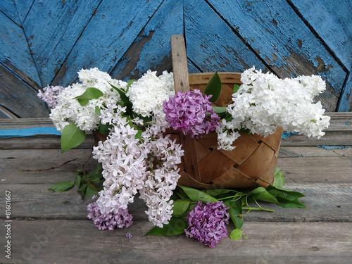 Foto op Canvas Lilac букет сирени в корзине на старом деревянном фоне