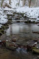 Mountain creek surrounded by snow