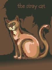 кот бродячий