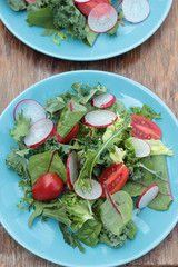 Freshly prepared green salad with sliced radish and tomatoes.