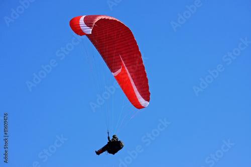 paraglider - 81609476