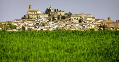 Typical Monferrato village, behind a meadow . Color image