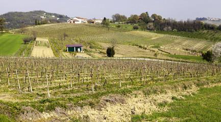 Monferrato panorama, springtime. Color image