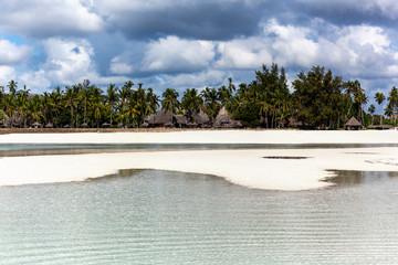 beach  kenya white island palm tree sun africa