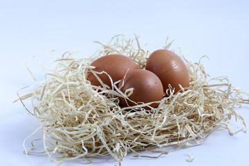 Uova nella paglia