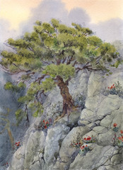 Watercolor landscapes. The tree in the mountains