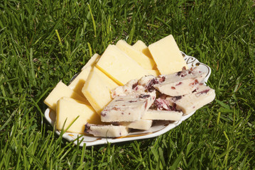 Yellow cheese and cheese with cranberries served on the grass