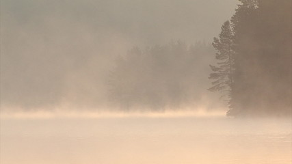 Mountain sunrise over lake with drifting fog, pine forest