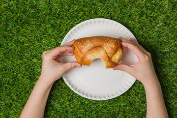 Human hands holding bun over empty plate on grass