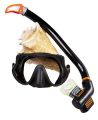 Tube for diving (snorkel), big sea shell and mask