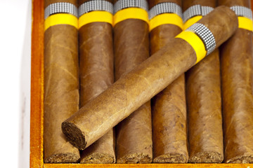 The Cuban cigars, hand made..