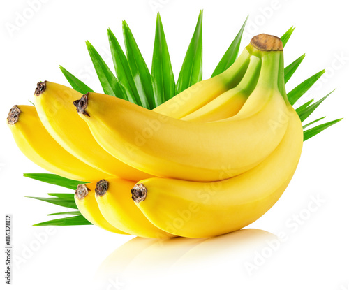 Obraz na Szkle bananas with leaves isolated on the white background