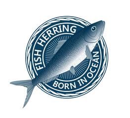 blue fish herring