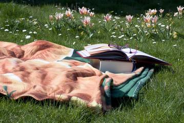 i libri sulla coperta colorata