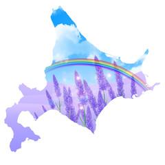 ラベンダー 北海道 背景