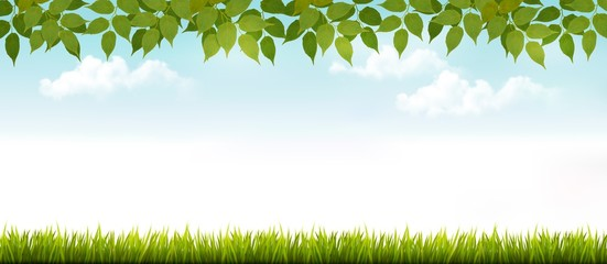 Long white fence banner with grass and leaves. Vector.