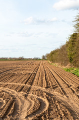 Plowed farmland under blue sky