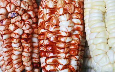 Red corns
