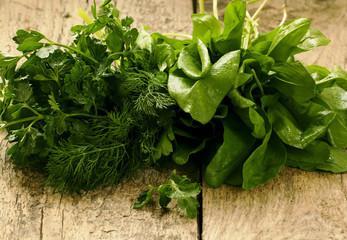 sorrel, parsley, dill,