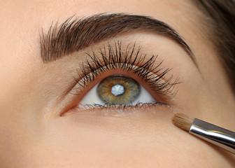 Make-up. Eyebrow Makeup.