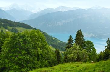 Lake Brienz summer top view (Switzerland).