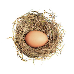 Hen egg in straw nest isolated