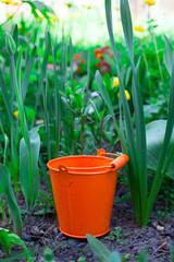 The orange bucket on land in green grass