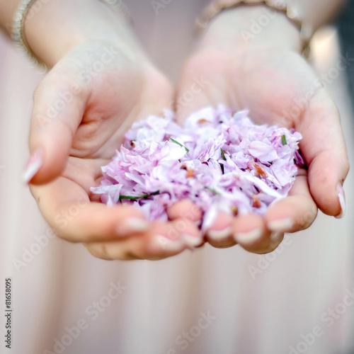 Foto op Plexiglas Kersen kirschblüten
