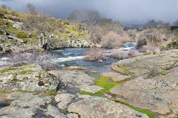 Rio Lozoya.Madrid