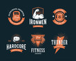 Retro Fitness Emblems - 81661461