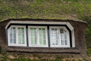 grass window hobbit movie style