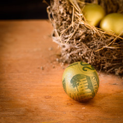 Golden eggs with dollar, wealth concept.