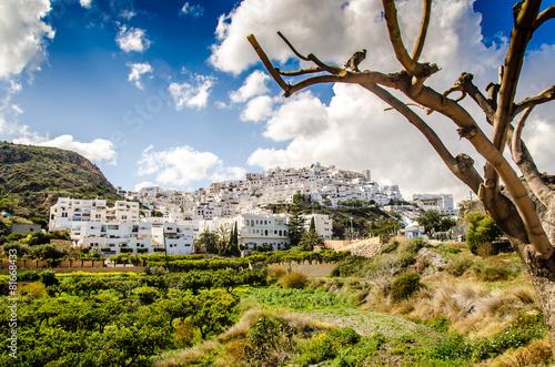 Altstadt von Mojacar Andalusien - 81668433