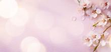 "Постер, картина, фотообои ""Art Spring border background with pink blossom"""