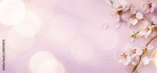 Art  Spring border background with pink blossom poster