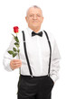 Elegant senior gentleman holding a red rose