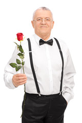 Elegant senior gentleman holding a red rose