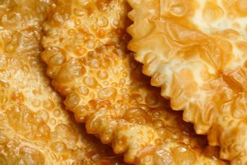 Empanada or Cheburek. Meat Pie