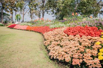 Beautiful garden.