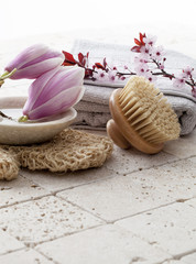 natural bodycare with magnolia flowers in background