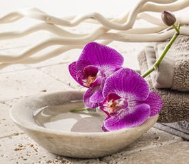cup of water with orchids for spa treatment