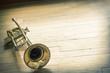 Trumpet Wooden Floor - 81681637