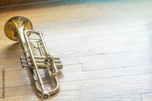 Trumpet Wooden Floor - 81681621