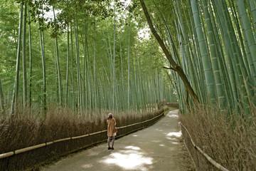 嵯峨野竹林道に佇む女性